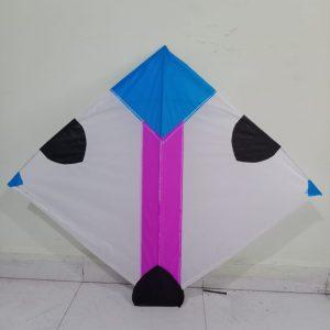 PoleEyes 2.5 feet